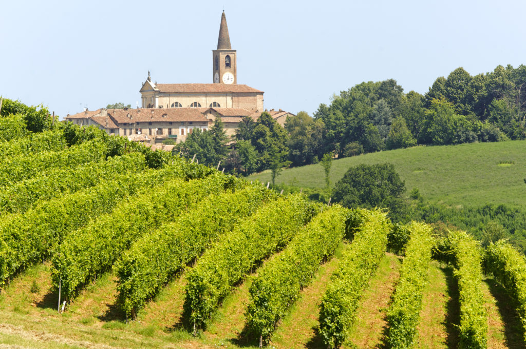 Landscape in the Oltrepo Pavese (Pavia, Lombardy, Italy) at summer