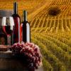 Como trazer vinhos da Itália para o Brasil?